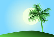 Tropical landscape with palm. Vector illustration royalty free illustration