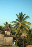Tropical landscape with a palm tree and a roof. Of an old house against the background of the evening sky. India, GOA, Arambol Stock Photos