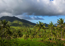 Tropical landscape with palm trees and forest. Distant mountain or hill green silhouette. Stormy clouds on blue sky. Perspective view of exotic island Royalty Free Stock Images