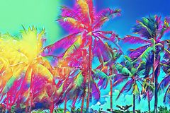 Tropical landscape with palm trees. Tropical nature neon digital illustration. Royalty Free Stock Photo