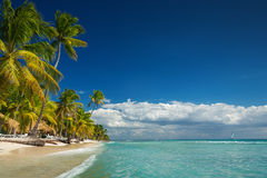 Tropical landscape of paradise lonely island beach stock image
