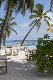 Tropical landscape. Paradisiacal landscape tropical beach in the Maldives Royalty Free Stock Photo