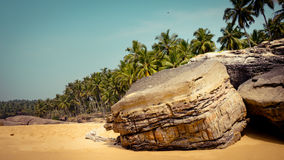 Tropical landscape with rock and palm trees at background Stock Photography