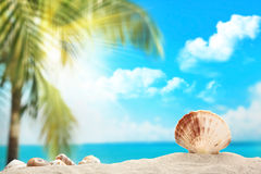 Tropical landscape Royalty Free Stock Photography