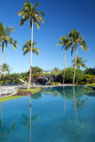 Tropical landscape in spa resort. Tropical landscape in a beautiful relaxing spa resort Royalty Free Stock Images