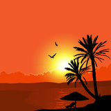 A Tropical Landscape Sunset with Palm Trees. 2d vector Stock Images