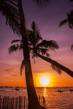 Tropical landscape at sunset. Palm trees on sky background. White beach. Boracay. Philippines. Stock Photos