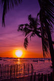 Tropical landscape at sunset. Palm trees on sky background. White beach. Boracay. Philippines. Royalty Free Stock Photos