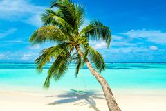 Tropical landscape with swings Royalty Free Stock Photo