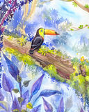 Tropical landscape with a toucan sitting on a branch Royalty Free Stock Photos
