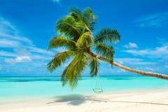Tropical landscape Stock Image