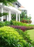 Tropical landscaping design Royalty Free Stock Images