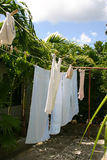 Tropical laundry. Laundry hanging out to dry on tropical island of Bonaire royalty free stock photo