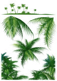 Tropical_leaf Royalty Free Stock Images