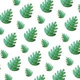 Tropical leaf botany nature background. Vector illustration royalty free illustration