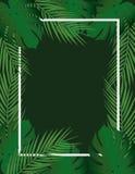 Tropical leaf frame. Vector illustration royalty free illustration
