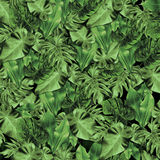 Tropical Leaf Pattern Royalty Free Stock Photos