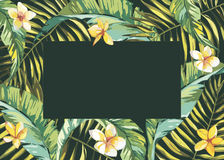 Tropical leafs composition background. Flat shapes hand drawn. Green on black with bird of plumeria flowers. EPS 10 Stock Photography