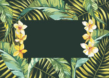 Tropical leafs composition background. Flat shapes hand drawn. Green on black with bird of plumeria flowers. EPS 10 Royalty Free Stock Image