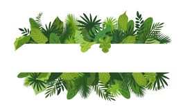 Free Tropical Leafs Concept Banner, Cartoon Style Stock Photography - 155041522