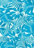 Tropical leaves Aqua blue Royalty Free Stock Image