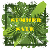 Tropical leaves background. Summer sale concept. Royalty Free Stock Images