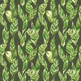 Tropical Leaves Background Stock Images