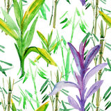 Tropical leaves of bamboo background Stock Images