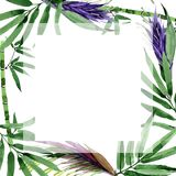 Tropical leaves bamboo tree frame in a watercolor style. Royalty Free Stock Image