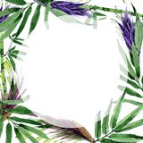 Tropical leaves bamboo tree frame in a watercolor style. Royalty Free Stock Photography