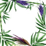 Tropical leaves bamboo tree frame in a watercolor style. Stock Images