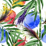 Tropical leaves bamboo tree pattern in a watercolor style. Royalty Free Stock Photos
