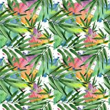 Tropical leaves bamboo tree pattern in a watercolor style. Stock Images