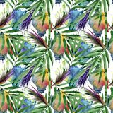 Tropical leaves bamboo tree pattern in a watercolor style. Stock Photos