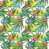Tropical leaves bamboo tree pattern in a watercolor style. Stock Photo