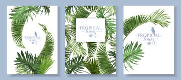 Tropical leaves banners set Royalty Free Stock Photography