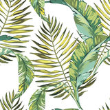 Tropical leaves. Beautiful seamless vector floral pattern background, exotic print. EPS 10. Tropical leaves. Beautiful seamless vector floral pattern background Royalty Free Stock Photo