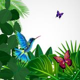 Tropical leaves with birds, butterflies. Floral background royalty free illustration