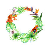 Tropical leaves, exotic birds, orchid flower. Floral wreath. Watercolor. Tropical leaves, exotic birds and orchid flower. Floral wreath. Watercolor Royalty Free Stock Photos