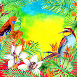 Tropical leaves, exotic birds, orchid flower. Watercolor card. Tropical leaves, exotic birds and orchid flower. Watercolor card Royalty Free Stock Images