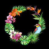 Tropical leaves, exotic birds, orchid flowers. Jungle wreath. Watercolor. Tropical leaves, exotic birds and orchid flowers. Jungle wreath. Watercolor Royalty Free Stock Image