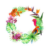 Tropical leaves, exotic birds, orchid flowers. Wreath border. Watercolor. Tropical leaves, exotic birds and orchid flowers. Wreath border. Watercolor Stock Photo
