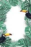 Tropical leaves exotic toucan bird border frame. Tropical jungle rainforest green palm tree monstera leaves with exotic toucan bird with big yellow beak. Border Royalty Free Stock Photos
