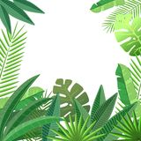 Tropical leaves floral design Stock Photography