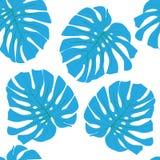 Tropical leaves. Floral design background Stock Images
