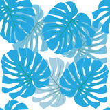 Tropical leaves. Floral design background Royalty Free Stock Photo