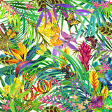 Tropical leaves and flowers background. Royalty Free Stock Photos