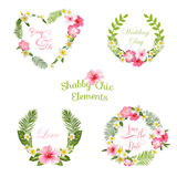 Tropical Leaves and Flowers Banners and Tags Royalty Free Stock Photos