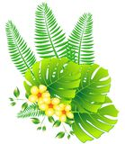 Tropical leaves and flowers Royalty Free Stock Photo