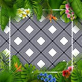Tropical leaves and flowers with empty frame square on black and white pattern background. Illustration of Tropical leaves and flowers with empty frame square on Stock Images